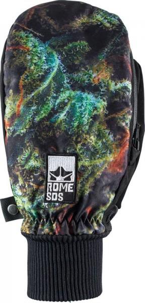 Rome Gloves Strain Lettuce